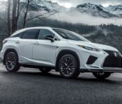 2022 Lexus Rx 450h Gs Vs Review Much Specs Interior